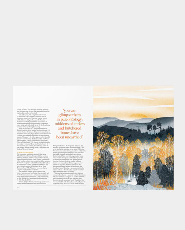 Alma de Alecrim - Revista Ernest #10